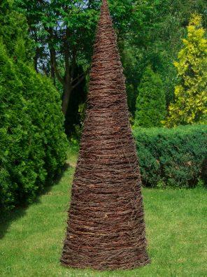 stożek-brzozowy